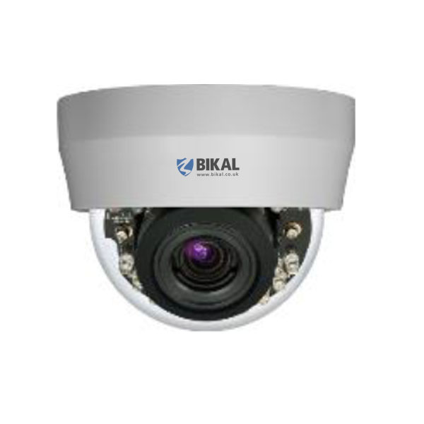 Mini Dome IP Camera